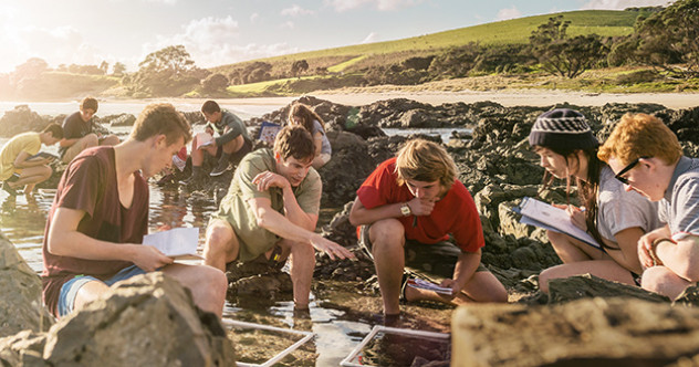 Learners exploring content of rock pools on water's edge